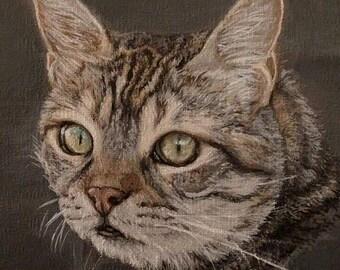 EXAMPLE Tabby Cat painting, Cat Portrait, Cat painting, Animal painting, Animal Portrait, Pets, Pet painting, Custom Made, Original Art,