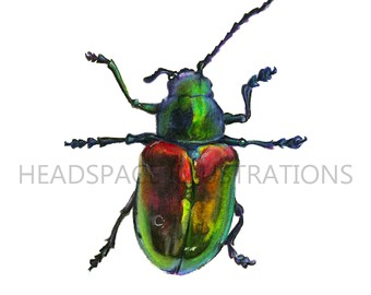 Colorful Shiney Metallic Beetle Beautiful Pretty Insect Colored Pencil Insect Bug Art Print by Headspace Illustrations Headspaceillustrates