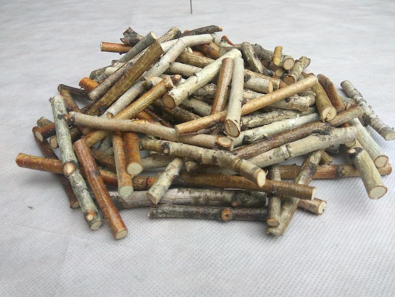 100 Small Birch Wood Sticks Birch Sticks Wood Decor Vase Etsy