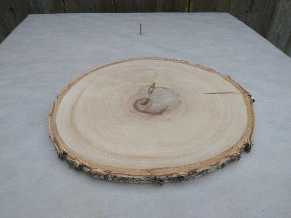 13-14 inch slab 13-14wood slice wood slab wood cake stand wood cake stand birch cake stand 13-14Large Birch Wood Slice birch log