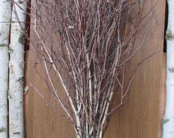 extra long birch twigs, birch twigs, birch tree branches, birch twigs bundle, birch broom