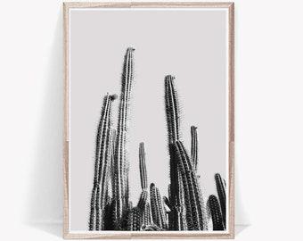 desert cactus art print, cacti wall art, black and white photography, wild plant poster, tropical, minimal decor, digital print, botanical