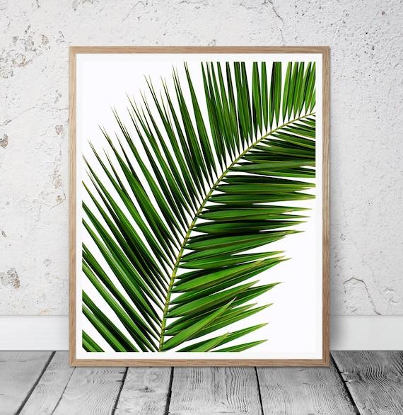 Tropical print Palm leaf Wall Art tree Print Palm Photo | Etsy