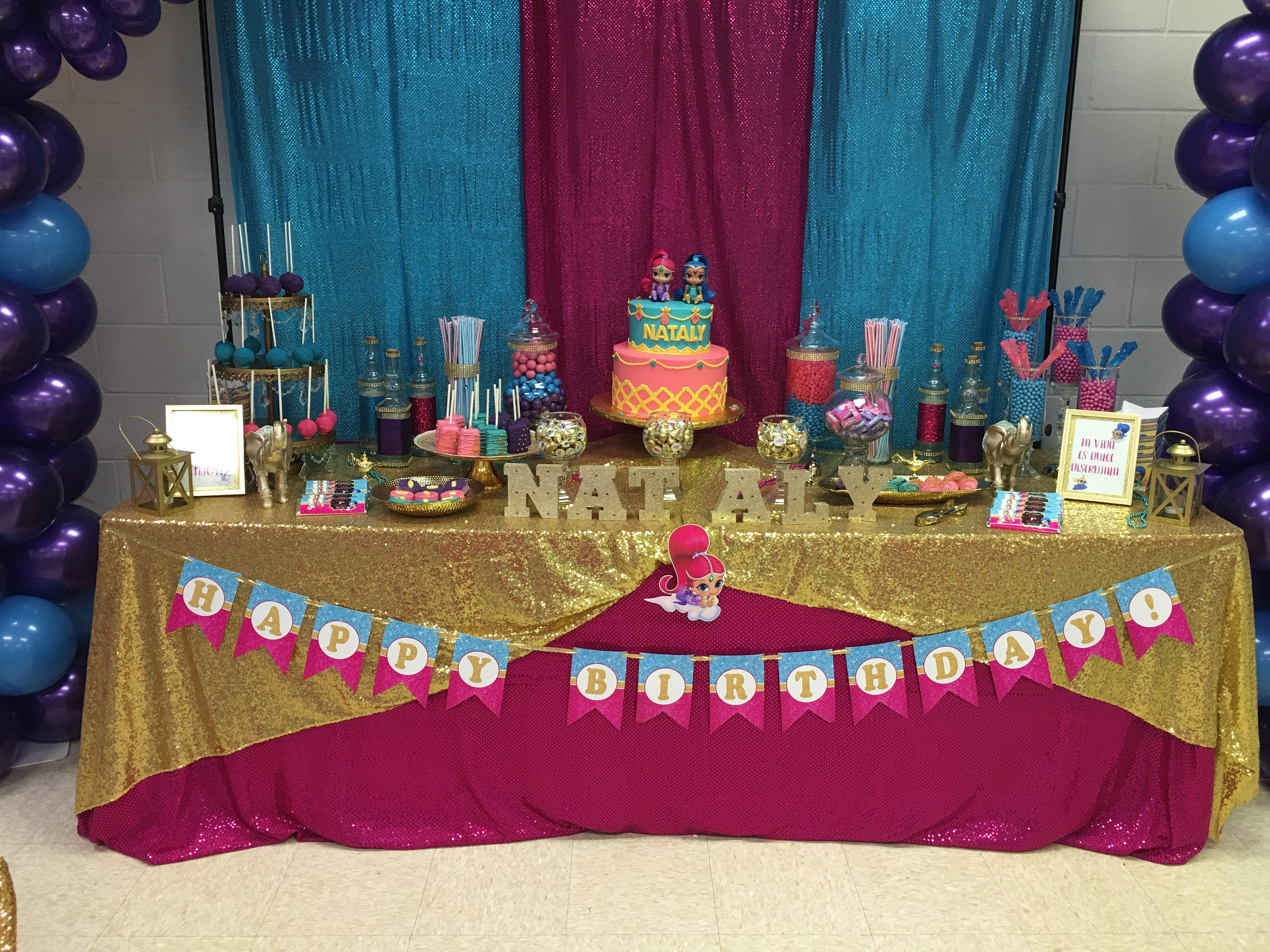 Shimmer And Shine Birthday Banner Party
