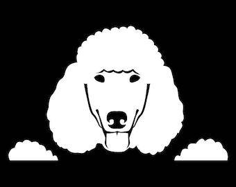 Peeking Standard Poodle vinyl decal window sticker