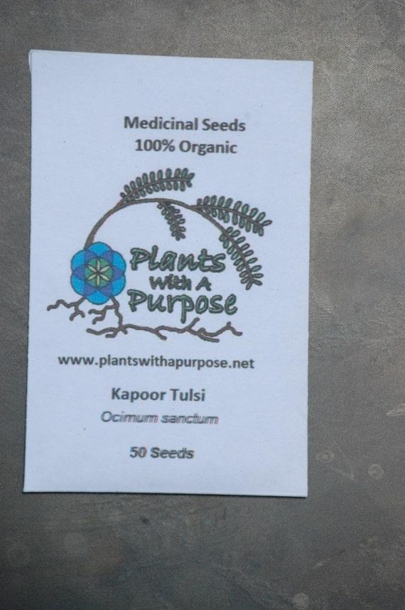 Kapoor Tulsi Rama Tulsi Combo Pack Medicinal Seeds Krishna Vana Organic