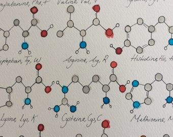 Watercolour Amino Acids