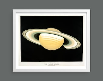 The Planet Saturn by Etienne Leopold Trouvelot | Trouvelot Astronomical Drawings 1882 | Astronomy space print/poster | Science wall art