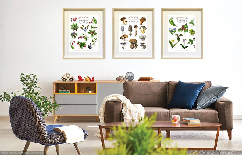 Educational Poster Triptych  Fr-En  10x8 in or 16x12 in  image 0