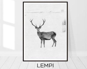 Deer Print, Deer Photography, Deer Art, Black and White, Animal Print, Printable Wall Art, Woodlands Decor, Printable Art, Instant Download