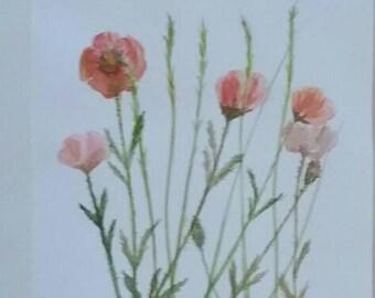 Poppyflower Original Watercolor