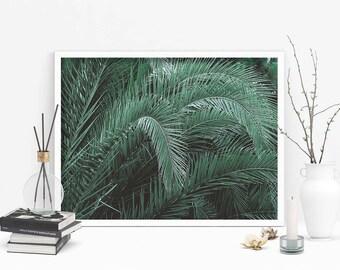 Tropical pattern poster print