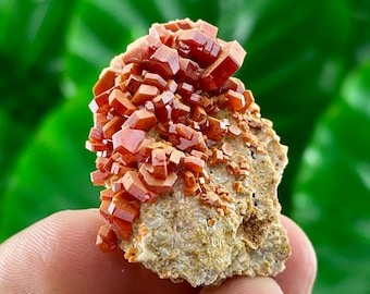 A very nice Vanadinite from Morocco,Crystal, Mineral,Specimen,Cluster,Vanadinite Crystal,Vanadinite,Geology,Vanadinite,Red Color, Home Decor