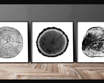 Tree Stump Tree Rings set of 3 12x12 inches log rings, Black and white, tree poster, tree art, log stamp, log print, Tree print, gifts under