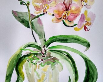 Pink purple yellow orchids, Original watercolor painting