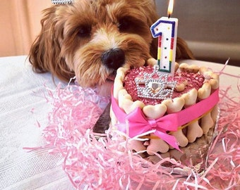 Dog Birthday Cake 3 For Dogs Party Pet Gift
