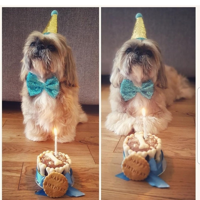 Astonishing Dog Birthday Cake Dog Cake Freshly Baked Natural Organic Etsy Personalised Birthday Cards Sponlily Jamesorg