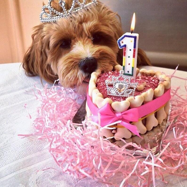 Marvelous Dog Birthday Cake 5 Cake For Dogs Birthday Etsy Funny Birthday Cards Online Unhofree Goldxyz