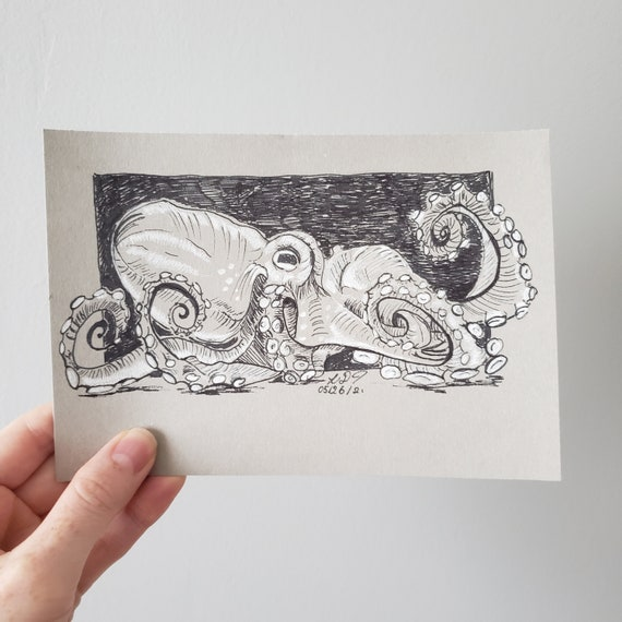 Sketch, Original Drawing, Octopus , Black and White Ink on Toned Paper