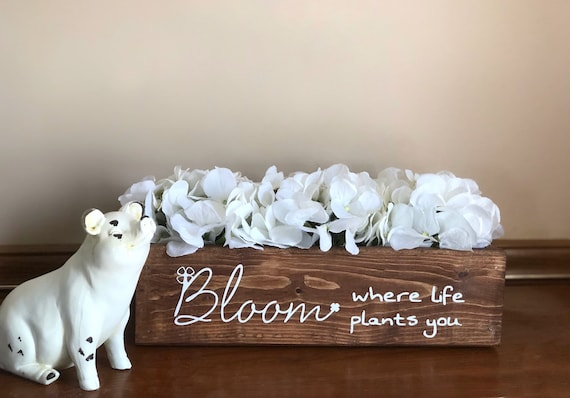 Bloom Where Life Plants You Hydrangea Arrangement