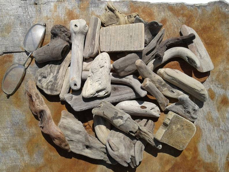 4-11.5cm Driftwood for various crafts and decoration 28 pieces 1.5-4.5 Quality driftwood Vase filler set DIY driftwood.