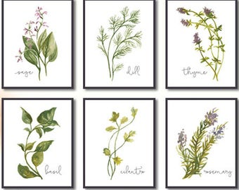 Herb Set of 6, Herbs Kitchen Decor, Watercolor Illustration, Herb Collection, Kitchen Decor, Herb Sets, Kitchen Decor, Natural Kitchen Art
