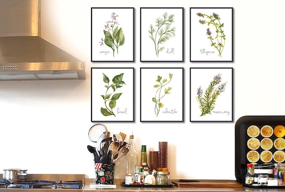 Herb Set Of 6 Herbs Kitchen Decor Watercolor Illustration Etsy