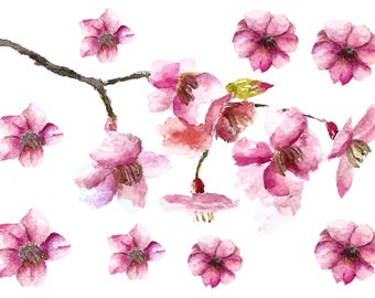 226554677 Cherry Blossom Watercolor Temporary Tattoos - Cherry Blossoms - Watercolor  - Flower Tattoos - Temporary Tattoo - Floral tattoos