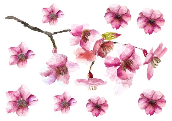 Cherry Blossom Watercolor Temporary Tattoos Cherry Blossoms Etsy