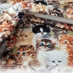 Sweet Kittens - Custom GRIME GUARD  for Q-Snap, Hoop or Scroll Rod / Made to order / 8x8, 11x11 inch / Dirt Dust Cover / Gift for Stitcher
