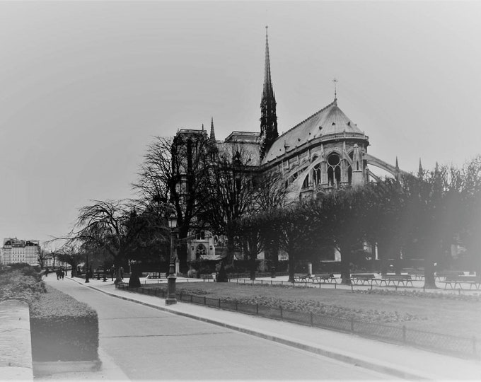 Ice Notre dame black and white Paris photography 8 x 12 inches (about)