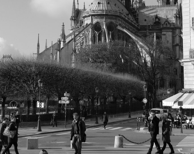 Wallpaper Hopy Notre-Dame black and white photography