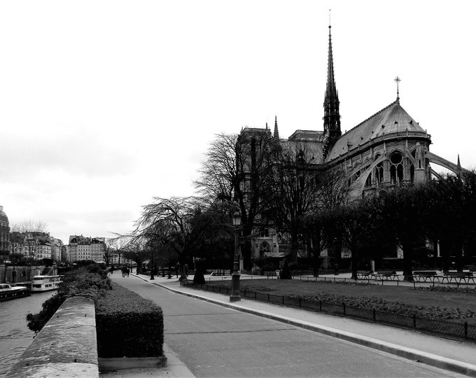 Wallpaper Esmeralda Notre-Dame black and white photography