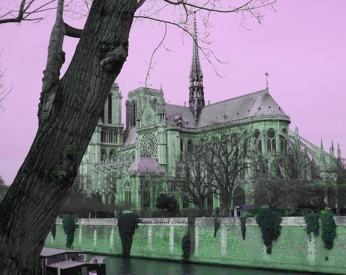 Pink Notre Dame