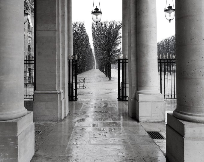 Intuition au Palais royal black&white