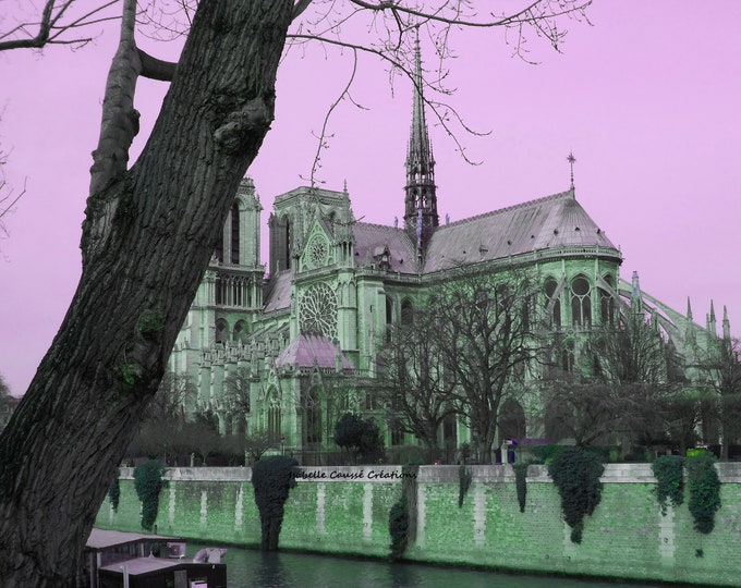 Pink Notre Dame 9 x 12 inches (about)
