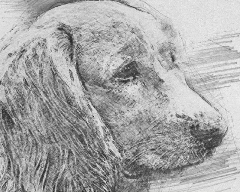 Gift for pet loss/_pet memorials/_pet memorial gift/_dog memorial/_cat memorial/_pet portrait custom/_pet loss gift/_dog loss gift/_dog photo memori