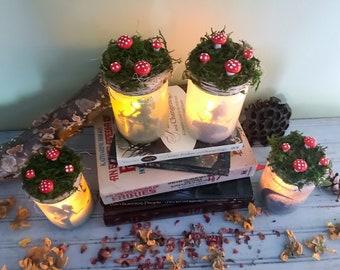 Fairy Ring Fairy Light, Fairy Light Jars, Fairy Lantern, Fairy Party Decoration,Birthday Fairy Decor,Summer Party Jars, Captured Fairy Jar