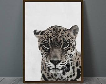 Jaguar Print, Jaguar Wall Decor, Jaguar Poster, Jaguar, Animal Print Wall Decor, Printable Jaguar Wall Art