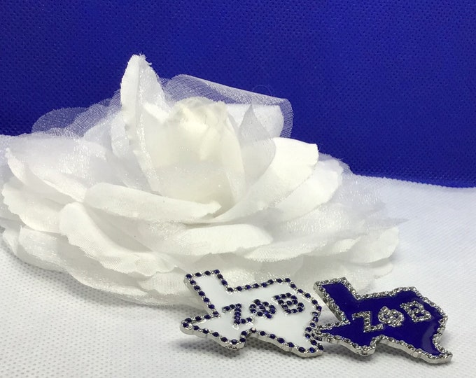 Zeta Phi Beta State of Texas Pin