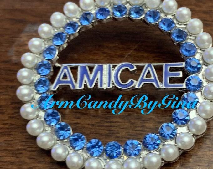 Zeta Amicae Pin