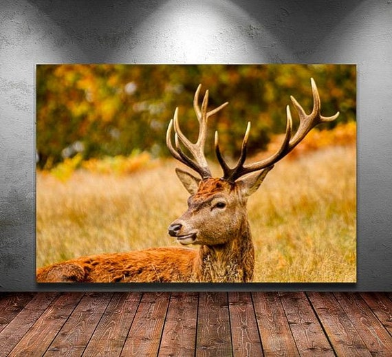 Print Canvas A Stag At Richmond Park Wall Art London Etsy