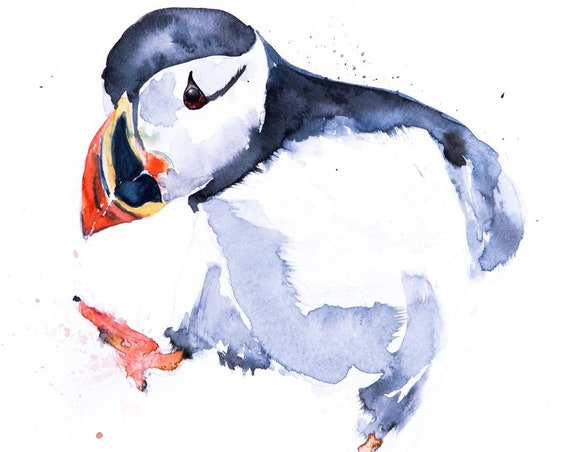 Puffin Watercolor Watercolour Painting -  Wall Art  - Hand Signed, Numbered, Dated and Embossed Limited Edition Print of my Puffin Painting