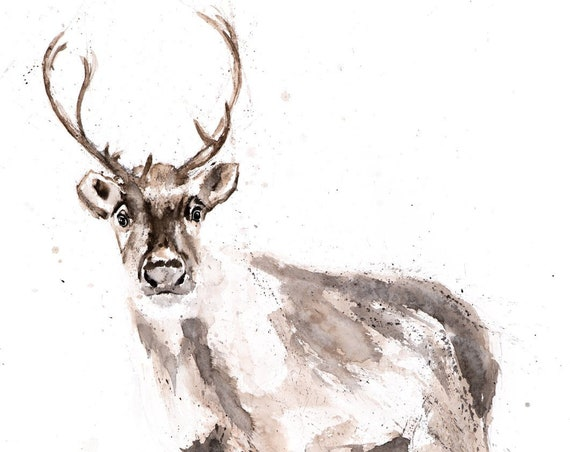 Reindeer Watercolor Watercolour Painting - Hand Signed Dated Numbered Embossed Limited Edition Print of the Original Painting Animal Art