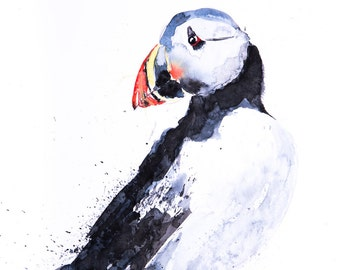 Puffin Painting No.1 - Hand Signed Limited Edition Print of my Original Watercolour Painting of a Puffin
