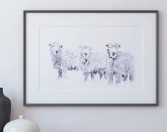 Grey Faced Dartmoor Sheep Watercolour Painting Living Room Art - Signed Limited Edition Print of my Original Watercolor Painting Sheep