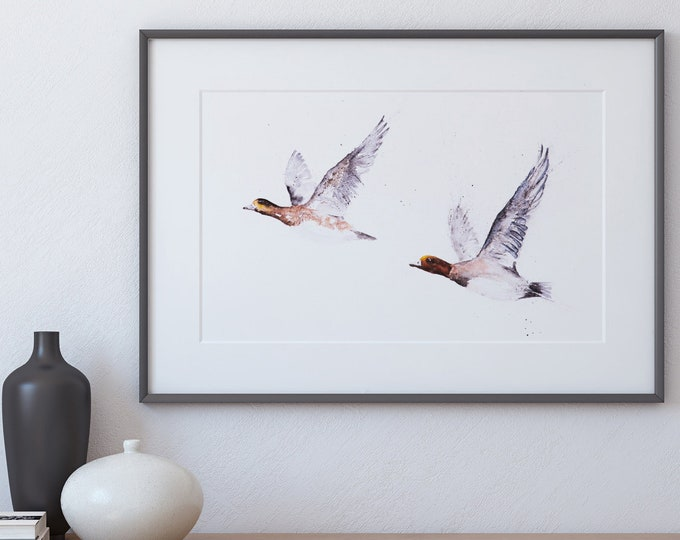 Widgeon Painting - Signed Limited Edition Print Wall Art Watercolour Painting Wildlife Abstract Modern Widgeon Water Colour Painting Bird
