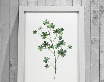Botanical Leaf Print No.1 on Watercolour Paper - Fine Art Print of a Leaf Watercolour Painting