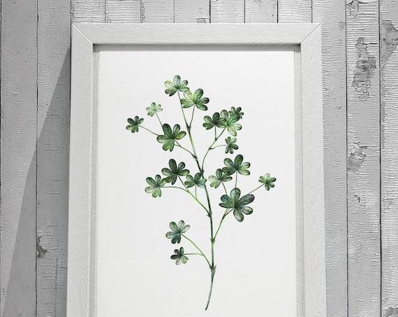 Botanical Leaf Print No.1 on Watercolour Paper - Fine Art Print of a Leaf Watercolour Painting