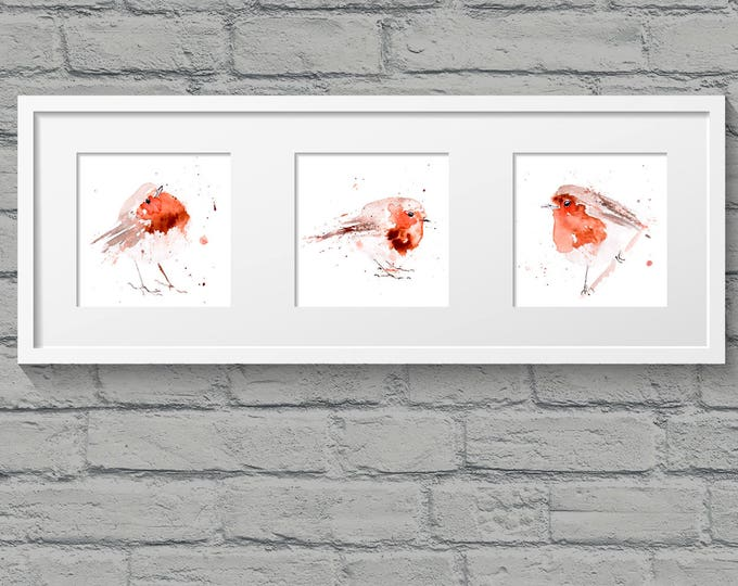 3 Fat Robin Red Breasts - Hand Signed limited edition Prints of my Original Watercolour Painting of Robin Birds Wall Art Nursery Art decor
